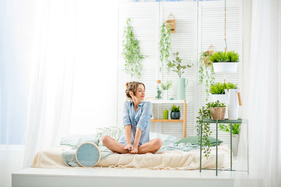 Good morning with green plants